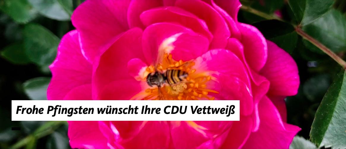 Pfingstgrüße aus der CDU